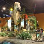 LOTS TO SEE AND DO AT DINOSAUR ISLE EVENT