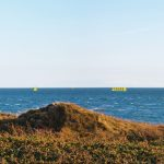 BUSINESSES INVITED TO TIDAL ENERGY CONFERENCE