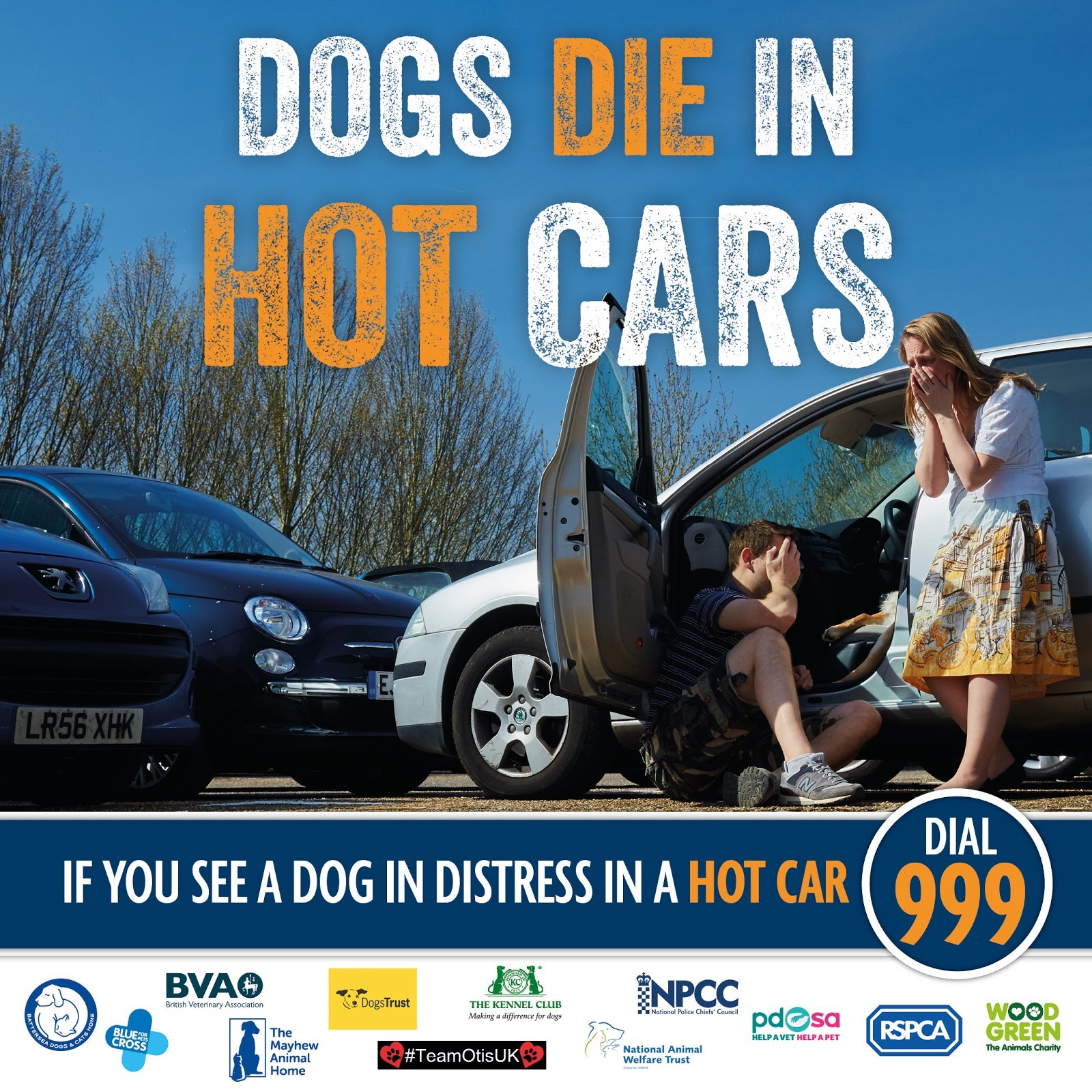 Dogs Left In Cars On Hot Days