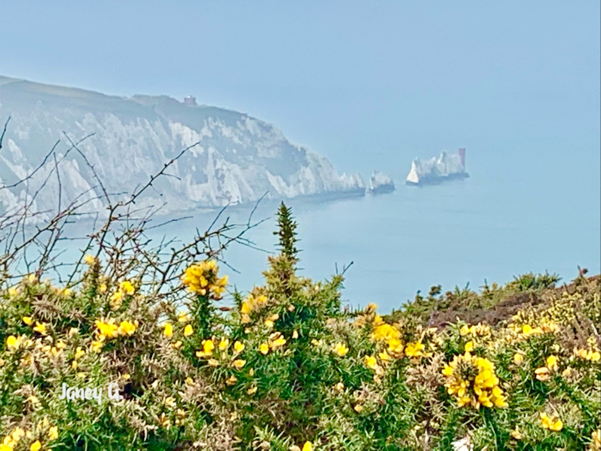 The Needles Westwight ~ Photo Credit Jane Grewcock