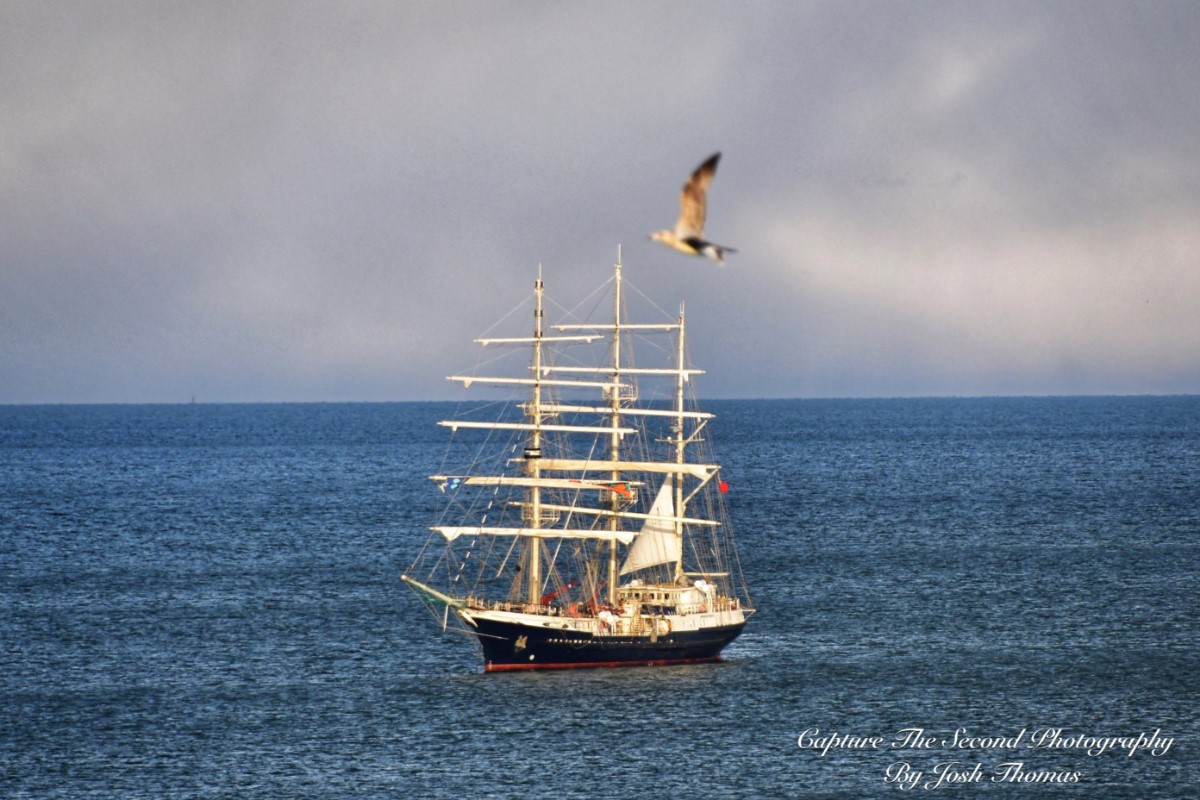 Pirates In The Bay Arrrr ~ Photo Credit Josh Thomas