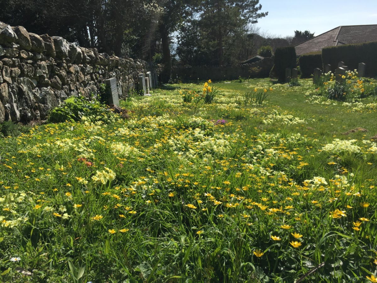St Lawrence The Old Church Yard ~ Photo Credit Elmer Keith