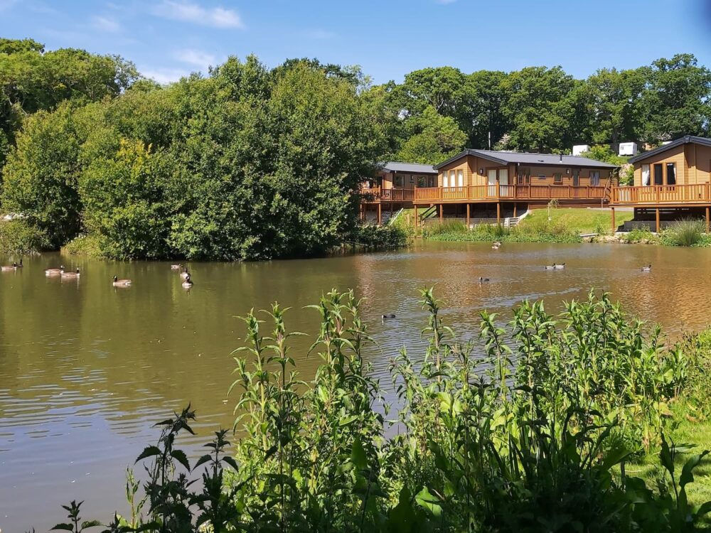 Roebeck Country Park boasts 2 lakes